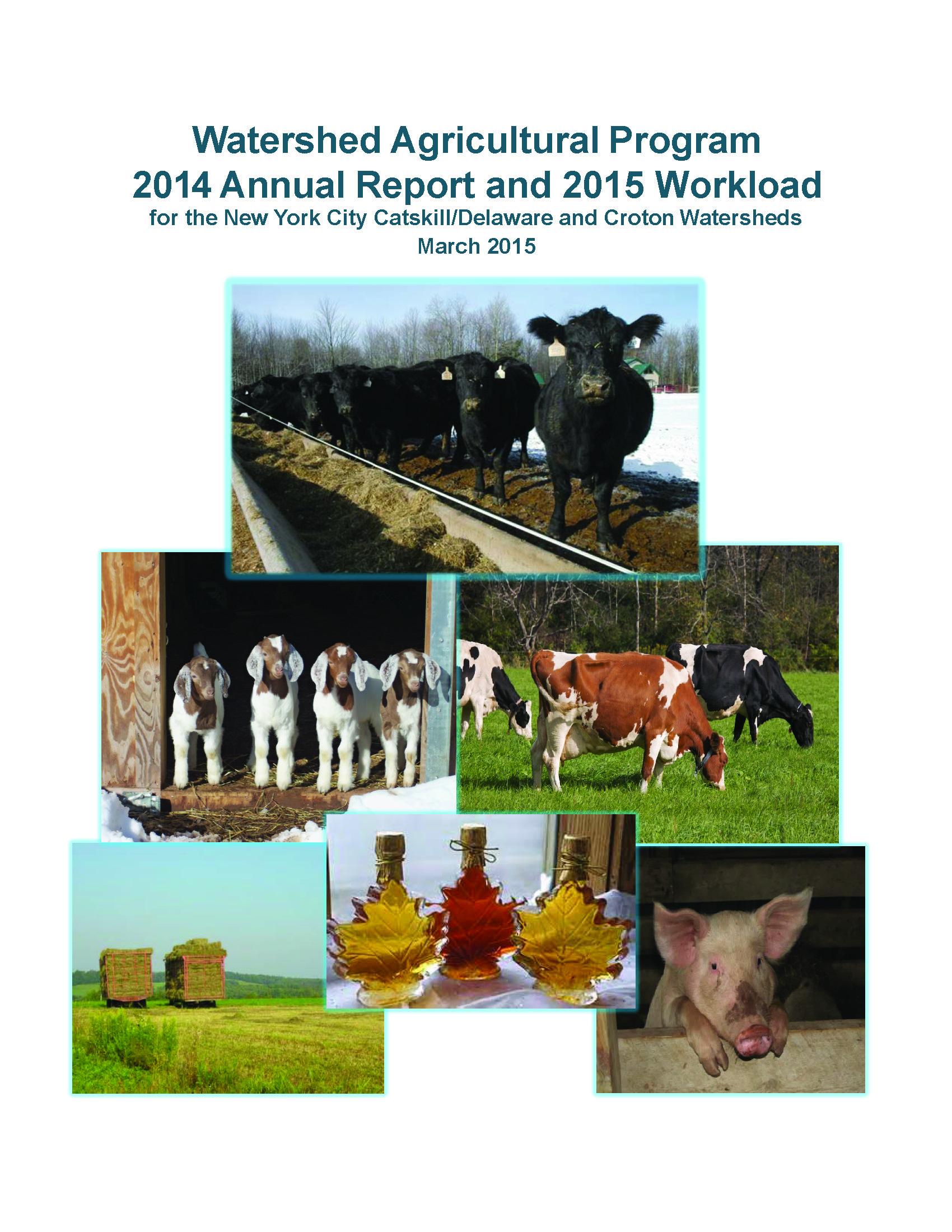 2014_WAP_AnnualReport