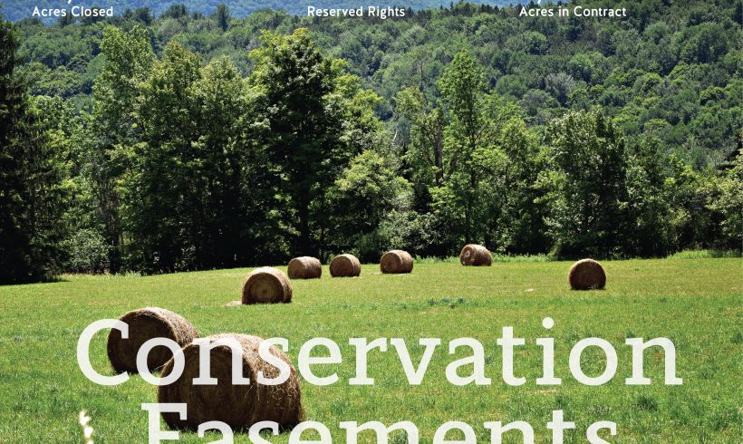 Forestry Easements: A Critical Role in Conservation