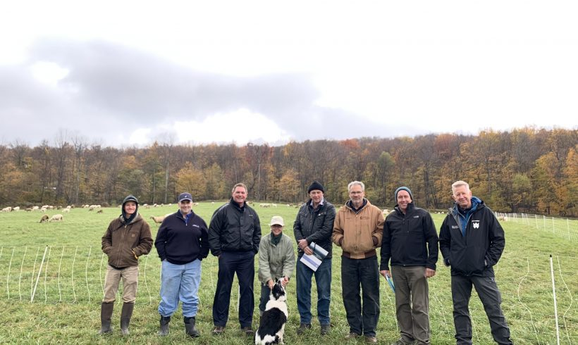 Welsh Farmers from the Brecon Beacons visit WAC Farms