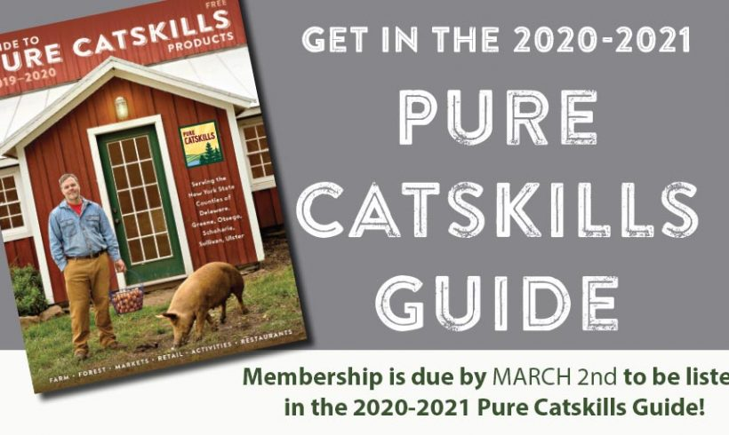 Get in the 2020-2021 Pure Catskills Guide