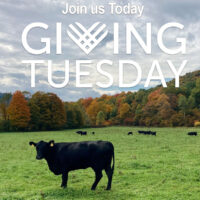 Join us for Giving Tuesday