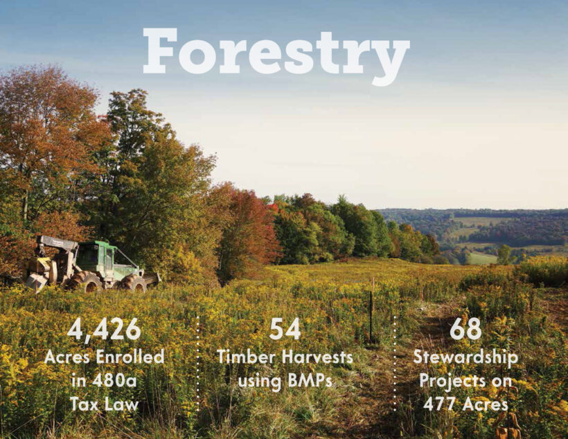 Forestry: Resiliency in a Time of Unprecedented Challenges