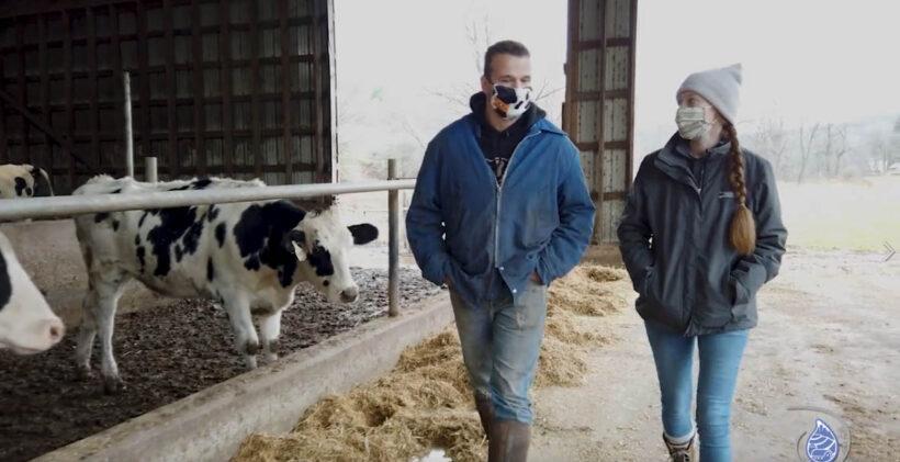 Clark Farms