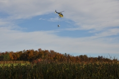 Aerial Crops 5