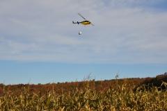 Aerial Crops 8