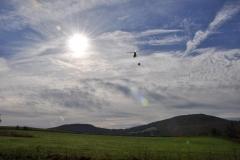 Aerial Crops 9