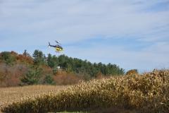 Aerial Crops 11