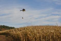 Aerial Crops 14