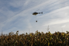 Aerial Crops 16