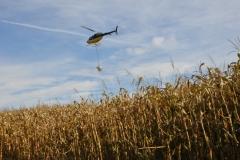 Aerial Crops 17