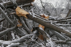 fire_storm