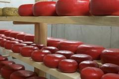 Farm Fresh Gouda Cheese