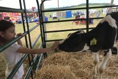 Dairy Fest 10
