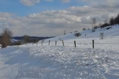 Winter Storm Stella28