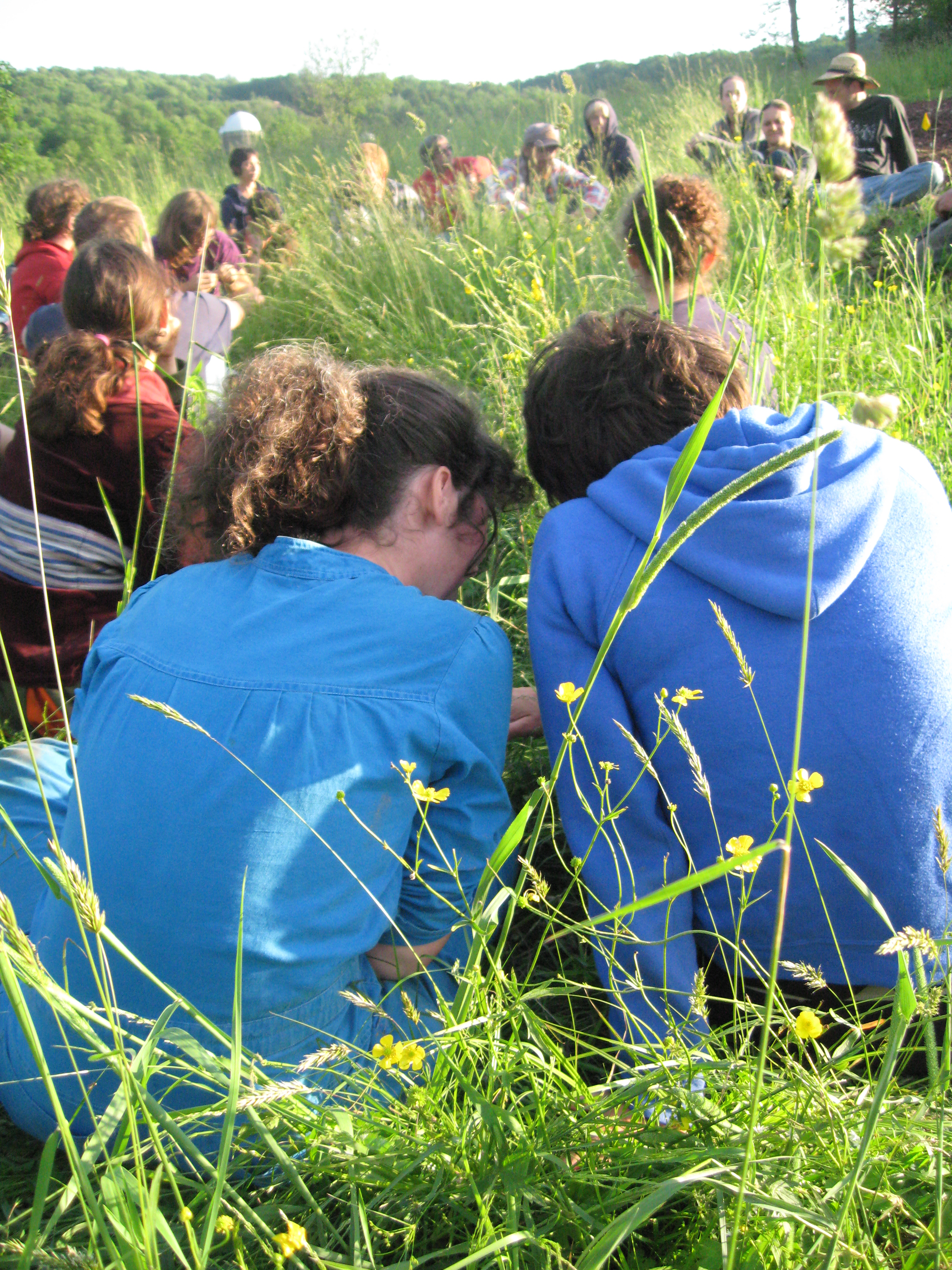 Young farmers huddle up during a Catskills CRAFT discussion at Willow Wisp Organic Farm June 2011.