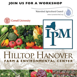 IPM Workshop May 21