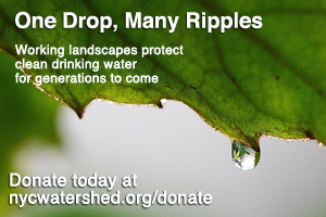 Donate today to protect  working landscapes