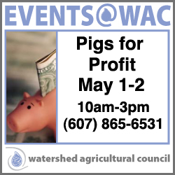 Pigs for Profile, May 1-2, 2014