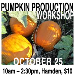 Pumpkin Production Workshop, October 25